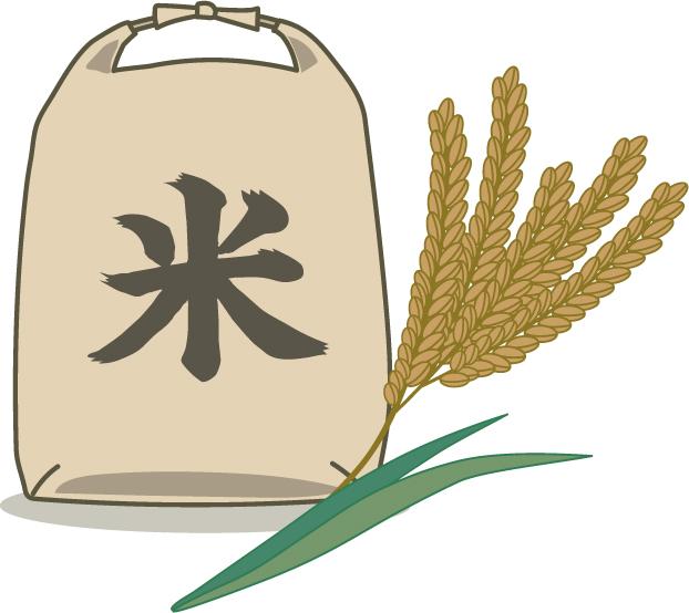 糖質制限では白米はダメで玄米はいいと言うが本当なの?