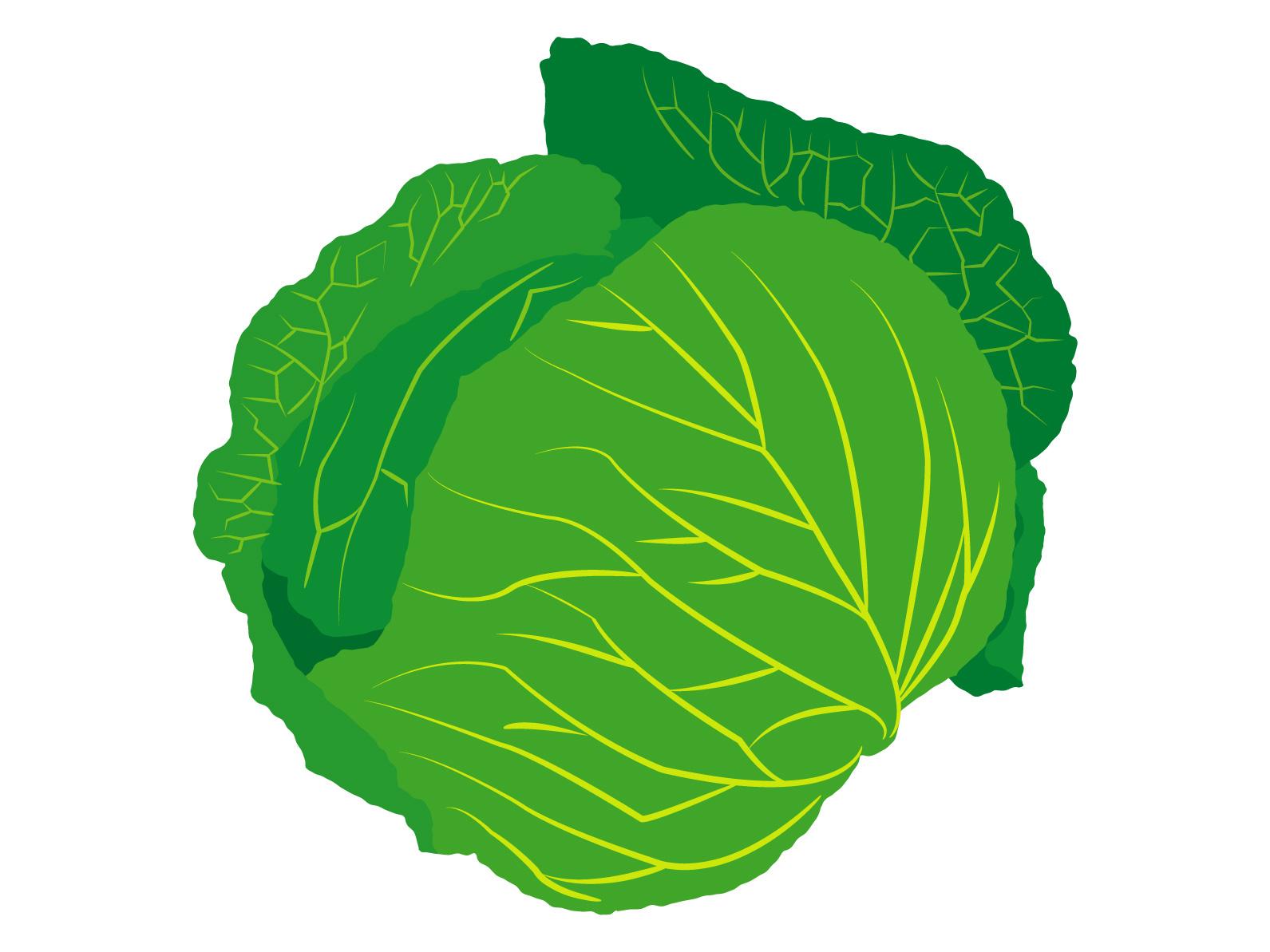 糖質制限食で食べてもいい野菜、ダメな野菜