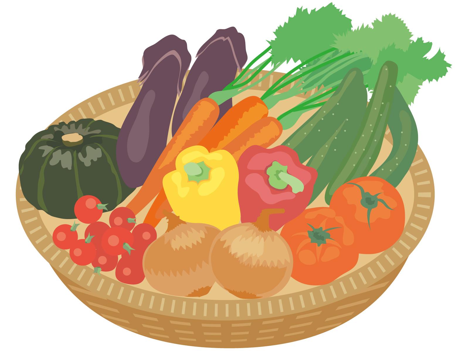 キャベツなどの野菜にはどれくらい糖質が含まれているのか