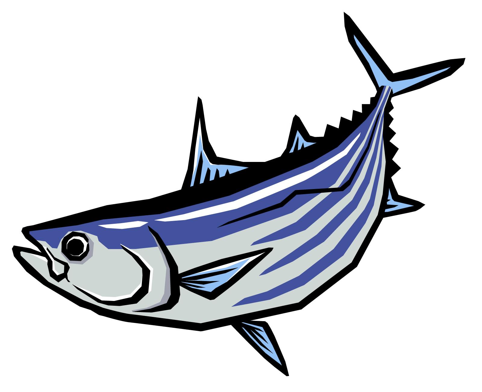 魚や水産練り製品(蒲鉾など)の糖質はどれくらい?